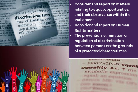 Remit of Equalities and Human Rights Committee