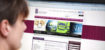 Woman looking at the Scottish Parliament website